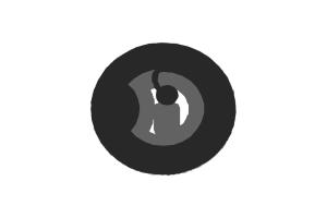 D=15mm 高频 RFID F08 干inlay