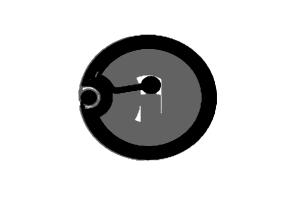 D=22mm 高频 RFID F08 干inlay
