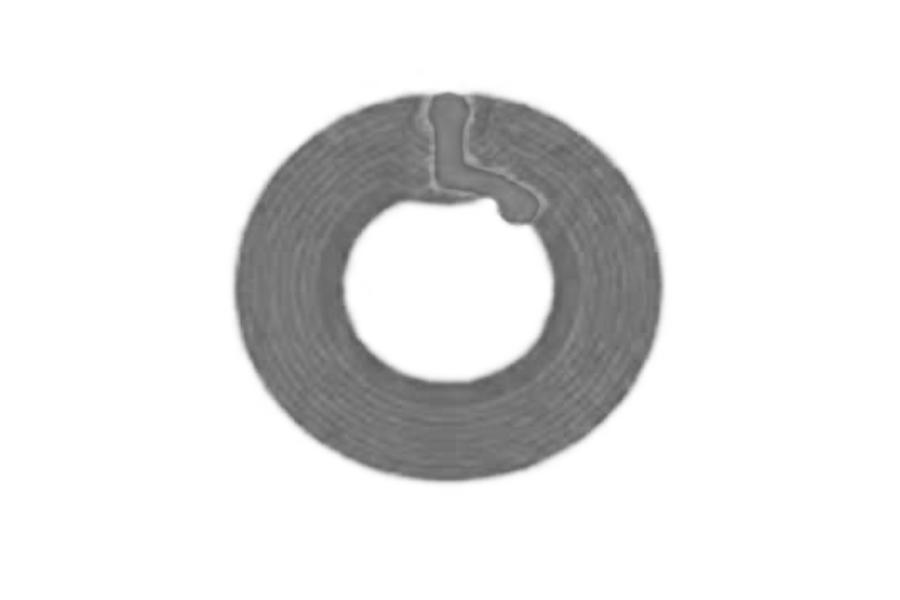 D=30mm 高频 RFID Ntag 干 Inlay Featured Image