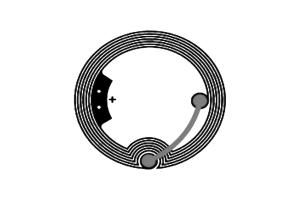 D=35mm 高频 RFID Ntag 干 Inlay
