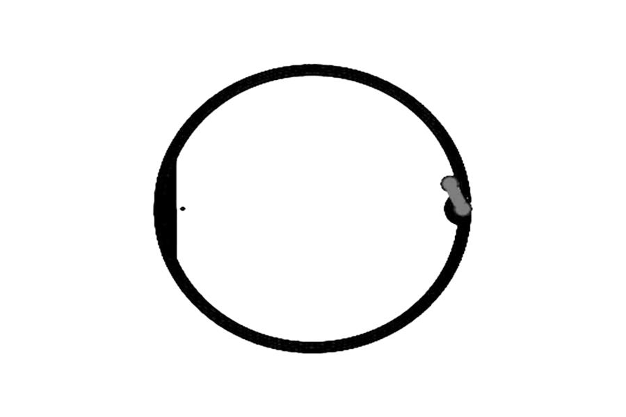 D=58mm 高频 RFID Ntag 干 Inlay Featured Image